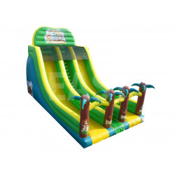 Inflatable Jungle Double Line Slide